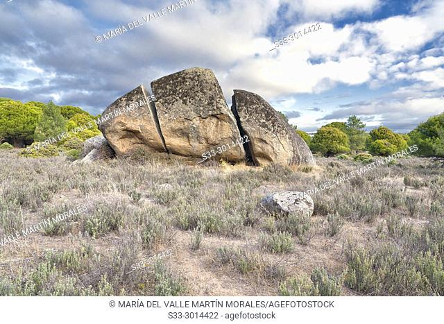 Granite rock on Concejo pinewood. Madrid. Spain