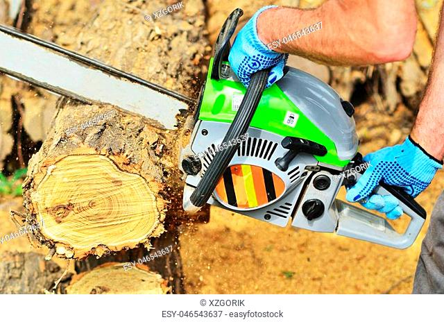 A man saws a piece of a large pack of chainsaw, holds it in his hands