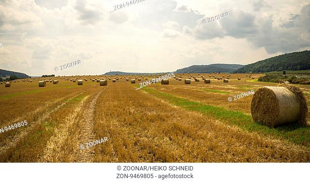 harvest time - straw bales in a field - Panorama