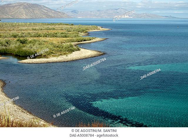 Bahia Concepcion coast, between Loreto and Mulege, Baja California Sur, Mexico
