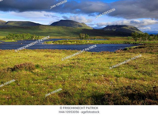 Mountain, mountains, water, summits, peaks, Glen Coe, Glencoe, Great Britain, Europe, Highland, highlands, sky, scenery, Loch, Loch Ba, Loch, moor, bog