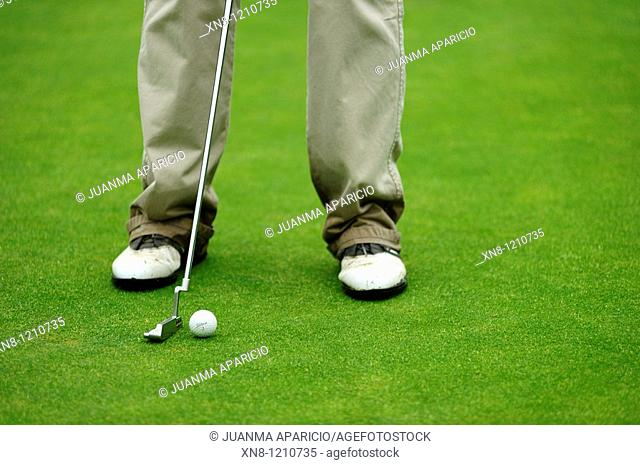 Golfer taking putt on green. Larrabea golf course, Alava, Basque Country, Spain