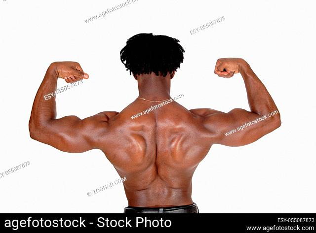 A young African American man standing from the back, lofting his arms flexing his biceps, with curly hair, isolated for white background