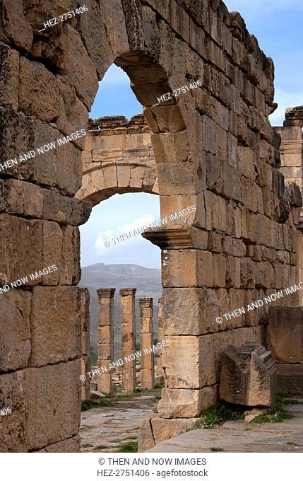 Algeria, Djemila, Cardo view