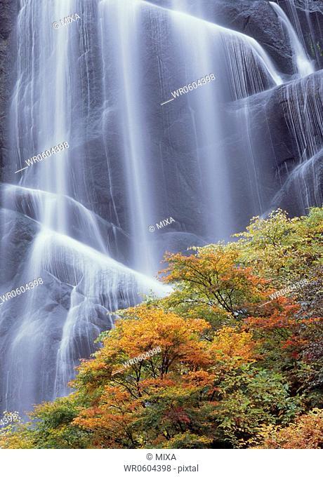 Yasunotaki Waterfall in Autumn, Kitaakita, Akita, Japan