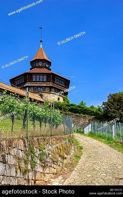Part of Esslingen Castle and vineyard, Baden-Wurttemberg, Germany