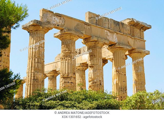 The Greek Temple Selinunte Sicily Italy