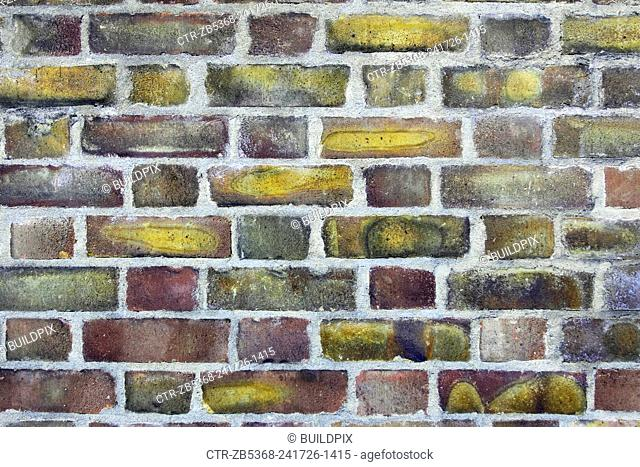Decorative brickwork: Flemish bond. Alternating headers and stretchers in the same course and placing the headers centrally over the stretchers in the course...