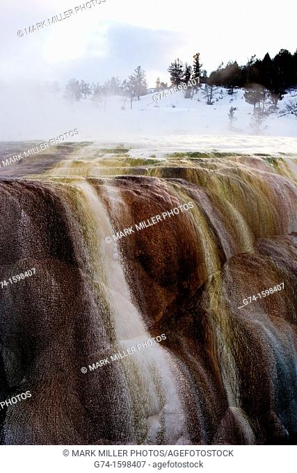 Mammoth Hot Springs Thermal Area, Yellowstone National Park, Wyoming, USA, pattern, design, abstract, background