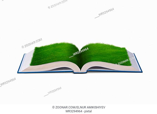 Open book in paper recycling concept - 3d rendering