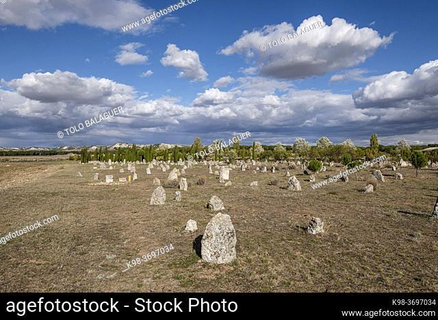 """necropolis of """"""""Las Ruedas"""""""", ancient Vaccea city of Pintia, Padilla de Duero, Valladolid province, Spain"""