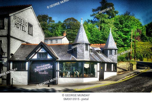 Taxidermy Business in Llangollen,. Denbighshire, . North-east Wales, United Kingdom
