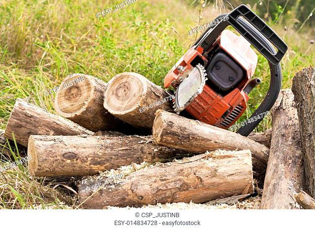 Chain saws cut logs in nature
