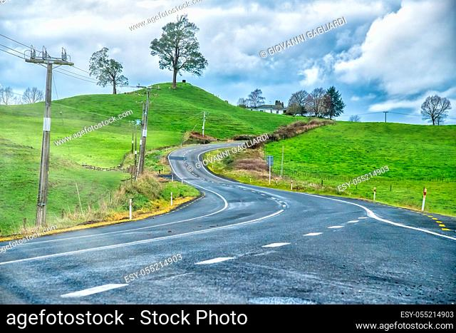 Windy road of New Zealand