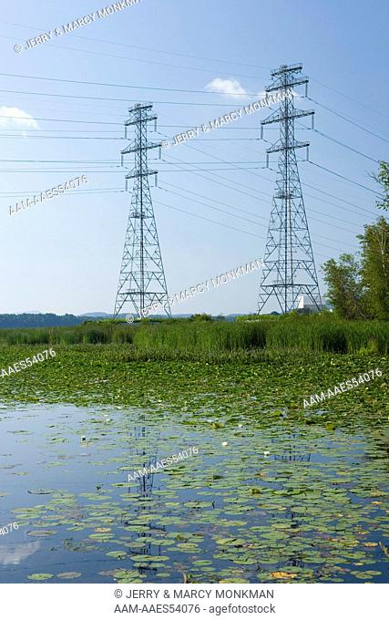 Water lilies grow thick in the Connecticut River in Hinsdale, New Hampshire. Power lines carry electricty from the Vermont Yankee Nuclear Power Plant across the...