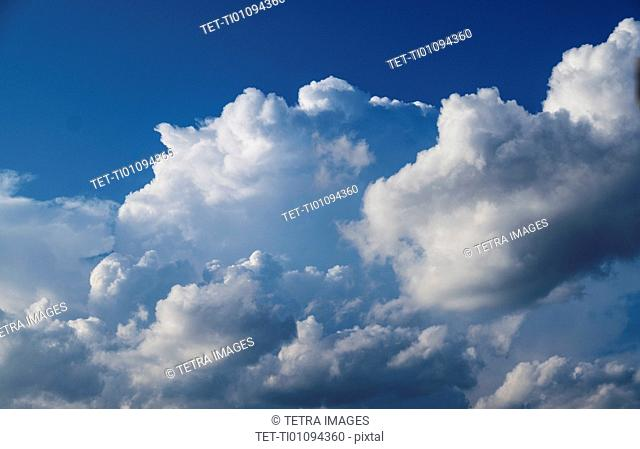 Cumulus clouds on sky