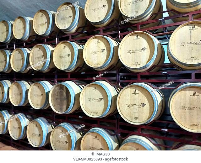 Wood barrels on Via Romana wine factory. Ribeira Sacra. Beselar, Lugo, Spain
