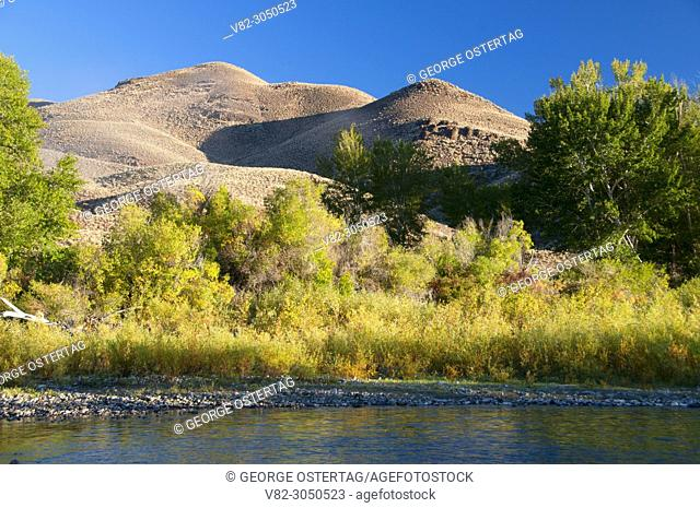 Salmon River, Salmon River Scenic Byway, Cottonwood Fishing Access Site, Idaho