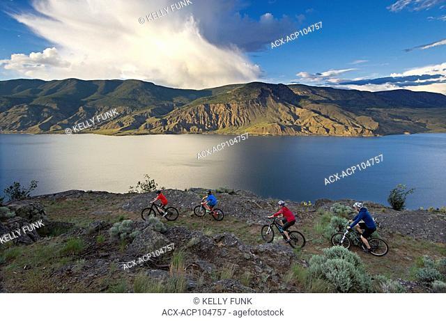 A group of mountain bikers rides a ridge trail over Kamloops lake, west of Kamloops, Thompson Okanagan region, British Columbia, Canada