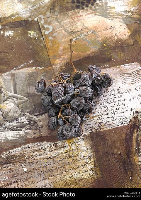 bodegón de uva y azúcar / still life of grape and sugar