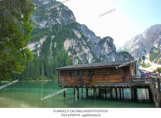 Turquoise water of the lake Lago di Braies, Pragser Wildsee surrounded by pine forest and mountains in the Prags Dolomites in South Tyrol, Italy, Europe