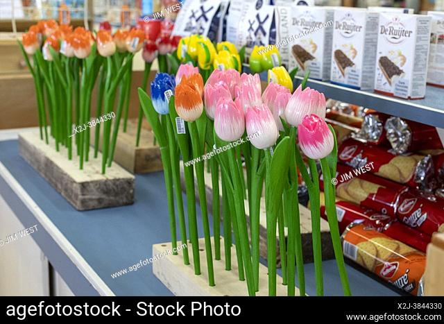 Holland, Michigan - Wooden tulips on sale at the De Klomp Wooden Shoe and Delft Factory, part of the Veldheer Tulip Farm