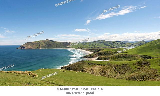 Beach and coast line, Allans Beach, Cape Saunders, Otago Peninsula, Dunedin, Otago, Southland, New Zealand