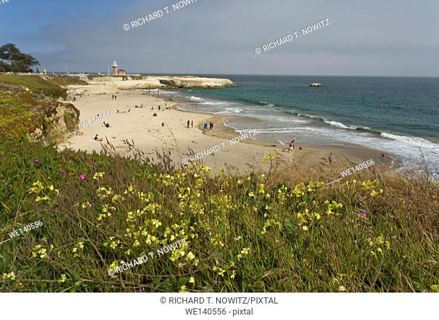 View of a beach in Big Sur, California