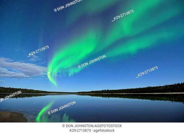 Aurora borelais (Northern Lights) over Pine Lake in moonlight, Wood Buffalo Ntional Park, Alberta, Canada