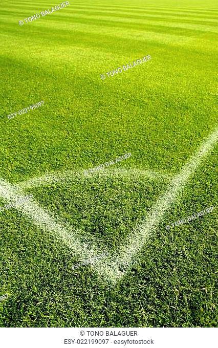 Football green grass field corner white lines