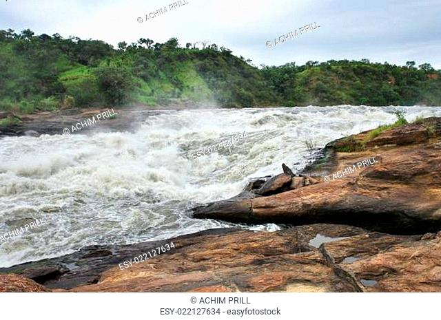 detail of the Murchison Falls