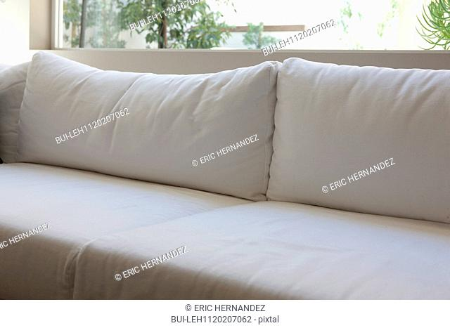 Close-up of white cushions on couch against window in the living room at home