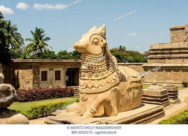 Nandhi bull, Indian deity, Gangaikonda Cholapuram, Ariyalur, Tamil Nadu, India