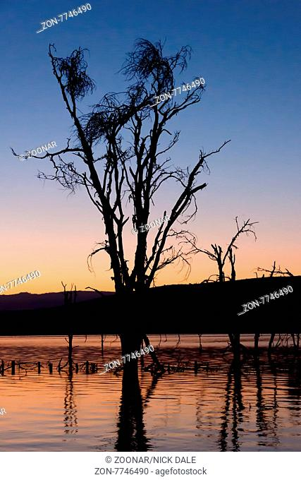 A dead tree in a lake is silhouetted before dawn. In the background are other trees sticking up out of the water against a blue and orange sky