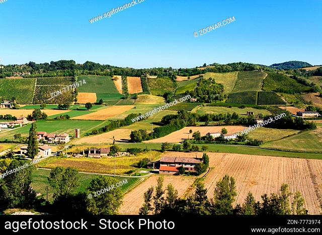 In the picture a beautiful view of the hills of Piacenza (Castell'Arquato) and its vineyards