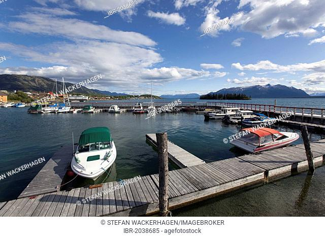 Atlin Lake, harbour of Atlin, British Columbia, Canada, America