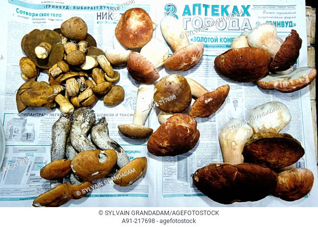 Fresh mushrooms at market. St. Petersburg. Russia