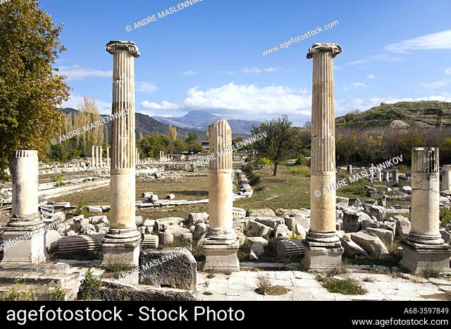 Ruins in the ancient city of Aphrodisias. Turkey. The remains of ancient Aphrodisias were partly hidden under the village of Geyre with about 950 inhabitants