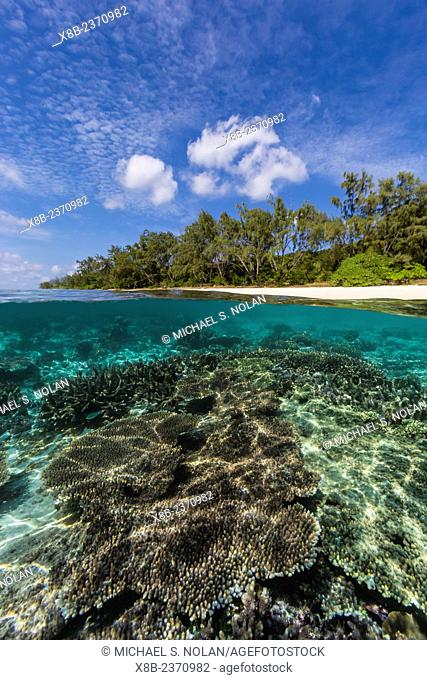 Above and below view of coral reef and sandy beach on Jaco Island, Timor Sea, East Timor