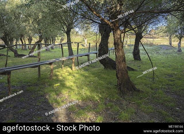 Kartal Eco Park, Orlovka village, Reni raion, Odessa oblast, Ukraine, Eastern Europe