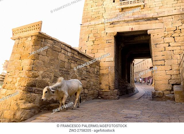 One of door to access at the fort. Jaisalmer, Rajasthan. India