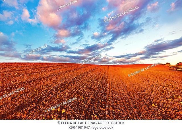 Red ploughed field landscape. Northwest of Guadalajara province. Castille La Mancha. Spain