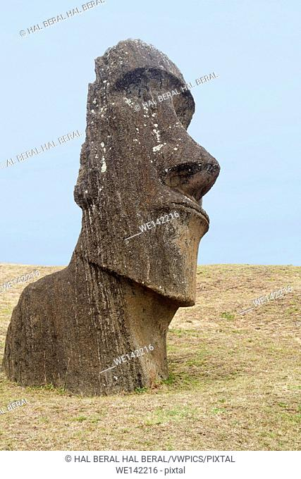 Statue (moai) at Rano Raraku. Easter Island, Chile