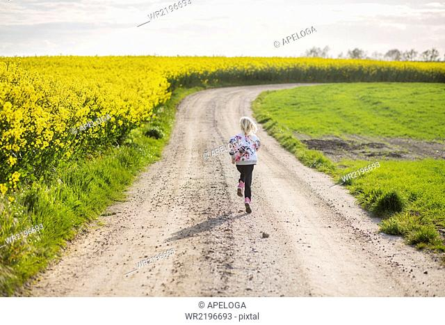 Rear view of girl running on dirt road at rapeseed field