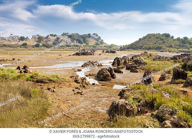 Natural Park of Marismas de Santoña near Santoña village, Cantabria, Spain