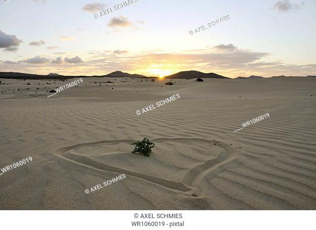 Heart drawn in the sand, dune, evening, Corralejo National Park, Fuerteventura, Canary Islands, Spain, Europe