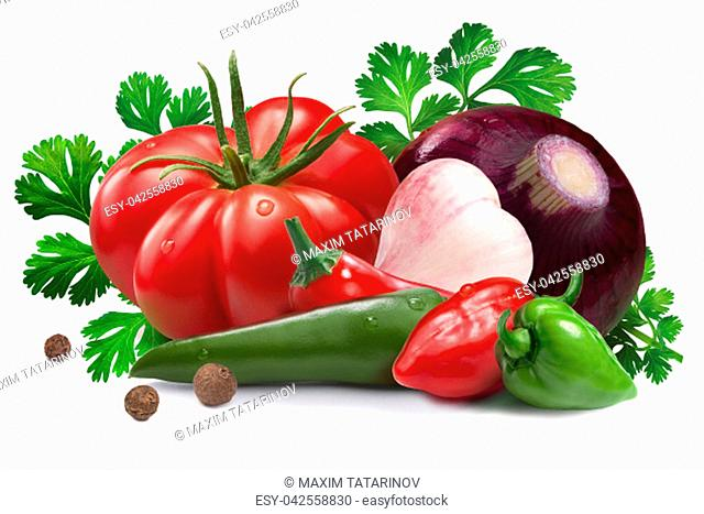 Garlic, onion, red and green habanero peppers, chili, heirloom tomato, cilantro. Ingredients for salsa roja. Clipping paths, shadow separated
