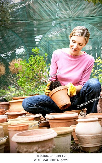 Young woman repotting a plant