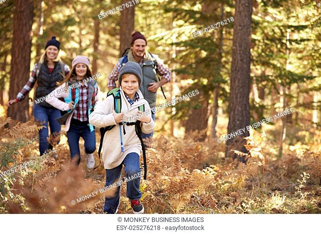 Family enjoying hike in a forest, Big Bear, California, USA