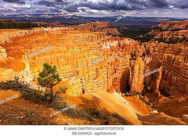 Rocky landscape ,Bryce Canyon,Utah,USA